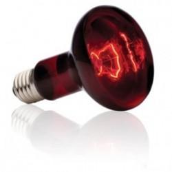 Ampoule pour lampe infrarouge